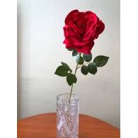 Rožė (73cm)