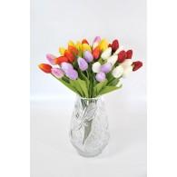 Tulpė (53cm)