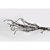 Medžio šakelė